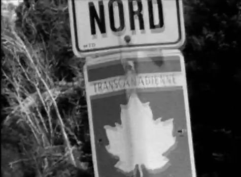 Neil-Young_Born-In-Ontario